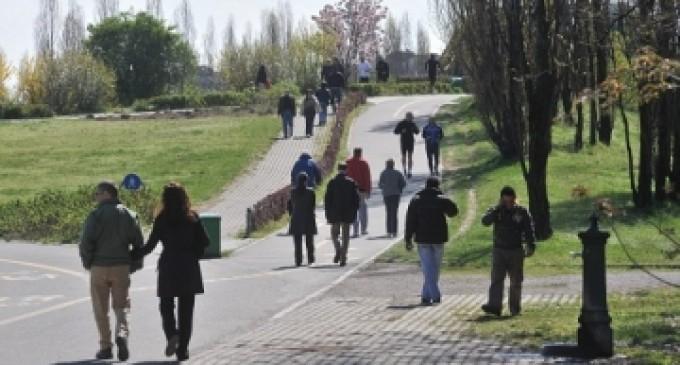 Riparte il corso di birdwatching al Parco Nord