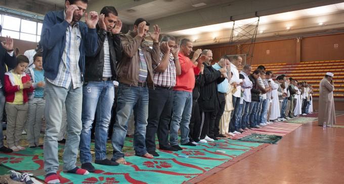 Festa islamica del Sacrificio, l'Ausl ferma la vendita di 40 agnelli