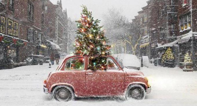 Concerti, spettacoli e mercatini: ecco i primi appuntamenti di Natale
