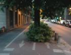 Ciclabili, da Regione Lombardia un finanziamento per renderle più sicure