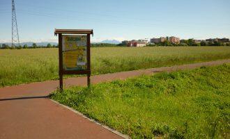 Cinisello, al Parco del Grugnotorto la Festa della Smielatura