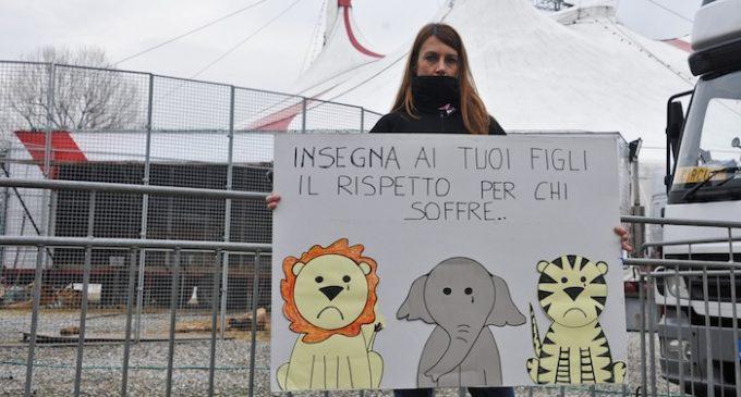Sesto rifiuta un circo con animali. Festeggia l'associazione animalista