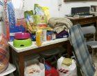 A Cinisello raccolta di materiali per i canili del Sud afflitti dal freddo