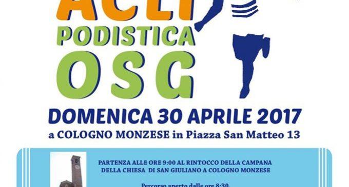Domenica 30 a Cologno la 43esima edizione della Marcia Acli