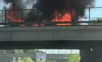Video: incendio a Cologno Monzese, auto in fiamme