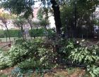 Blitz anti topi della protezione civile nel rione Crocetta di Cinisello