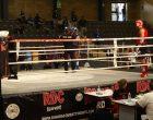 Campionati europei di Muay Thai a Cinisello: Tagliarino perde in finale, Cinquegrana è d'oro
