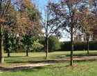 Week end di iniziative nel Parco Nord in veste autunnale