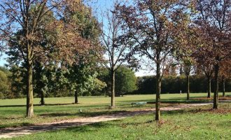 """Paderno, in città arriva l'iniziativa """"Pianta un albero con noi"""""""