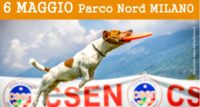 Al Parco Nord le qualificazioni mondiali di Disc Dog: spettacolo assicurato!