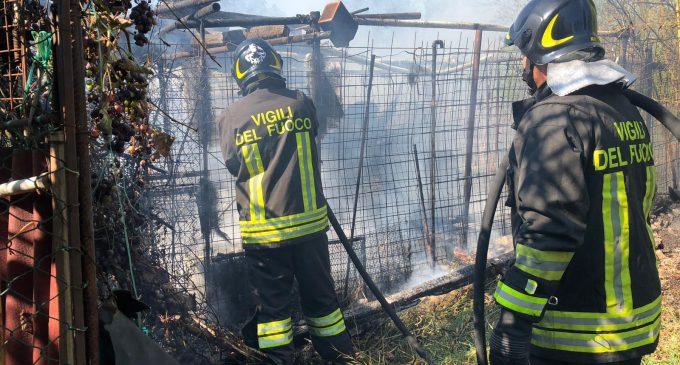 Cologno, incendio in via Generale Dalla Chiesa. Pompieri in azione