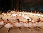 L'associazione Il Fontanile porta la danza a Cologno