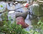 Cologno, ritrovato cadavere di un uomo nel Lambro
