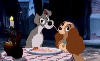 Coppia di cani in fuga romantica, ritrovati a Bresso