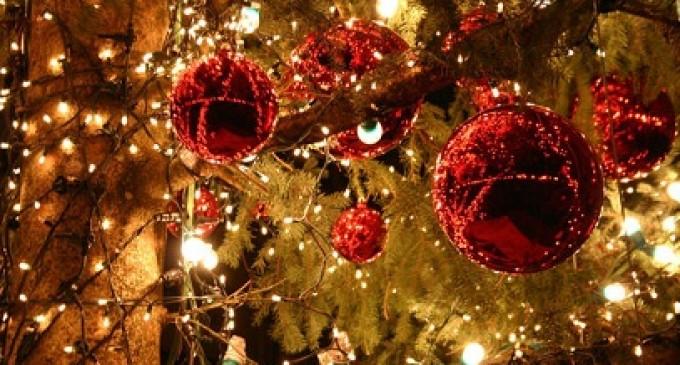 """Cinisello Balsamo, negozi vestiti a festa con il concorso """"Natale in Vetrina"""""""