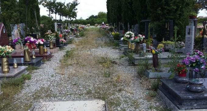 Cinisello Balsamo. Novità per i cimiteri: approvato il piano di manutenzione e crematorio potenziato