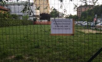 Cani avvelenati: stasera a Cinisello una fiaccolata