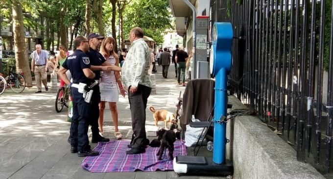 Mendicante con cani malnutriti fermato dai ghisa: i cuccioli che tentava di vendere saranno dati in adozione