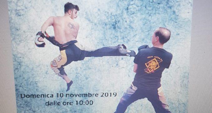 Cinisello Balsamo, Kick boxing al Palazzetto