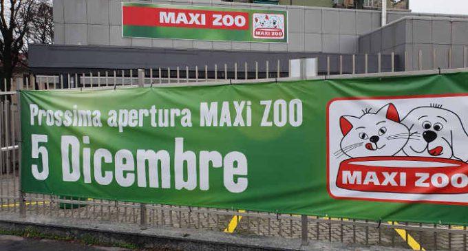 Sesto San Giovanni, apre il nuovo store di Maxi Zoo