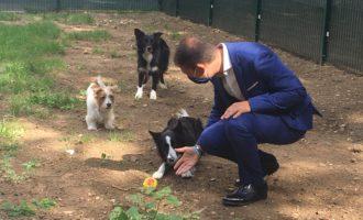 Sesto San Giovanni, inaugurata la nuova area cani nel parco Crisafulli