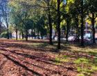 Sesto San Giovanni, è ufficiale: il giardino della scuola XXV Aprile è salvo!