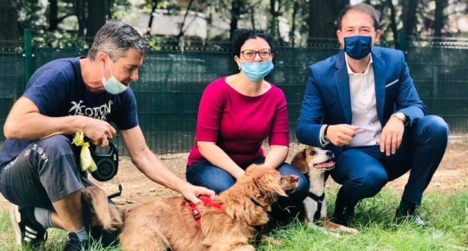 Sesto San Giovanni, approvato il nuovo Regolamento per il benessere e la tutela degli animali