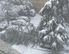 Sesto San Giovanni, bella la nevicata ma quanti disagi. Albero abbattuto sulle macchine di un parcheggio