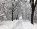 Nord Milano sotto la neve. Ecco le vostre foto (4). Inviate le vostre immagini entro la mezzanotte del 31/12/2020