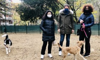 Sesto San Giovanni, dog-sitter gratuito per chi è in quarantena e per le categorie fragili
