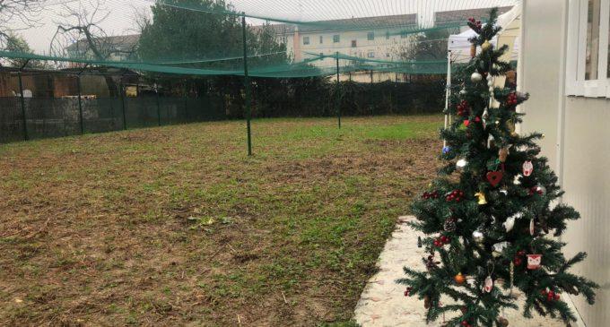 Sesto San Giovanni, inaugurata l'oasi felina di via Madonna del Bosco