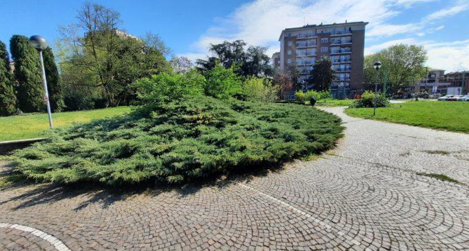 Cinisello Balsamo, in corso i lavori di potatura siepi e alberi con ripulitura del sottobosco al Parco Alpini d'Italia
